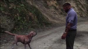 GTAV Dog
