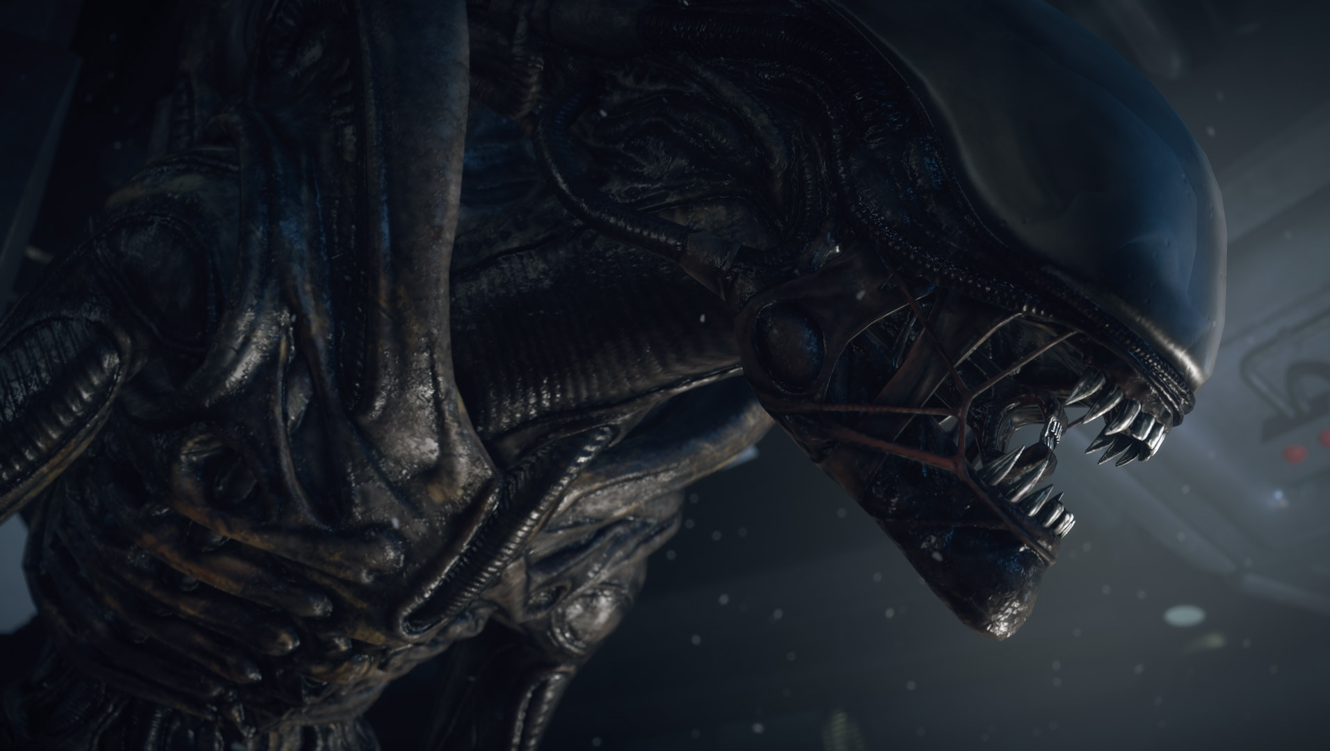 Alien: Isolation Release Date Announced
